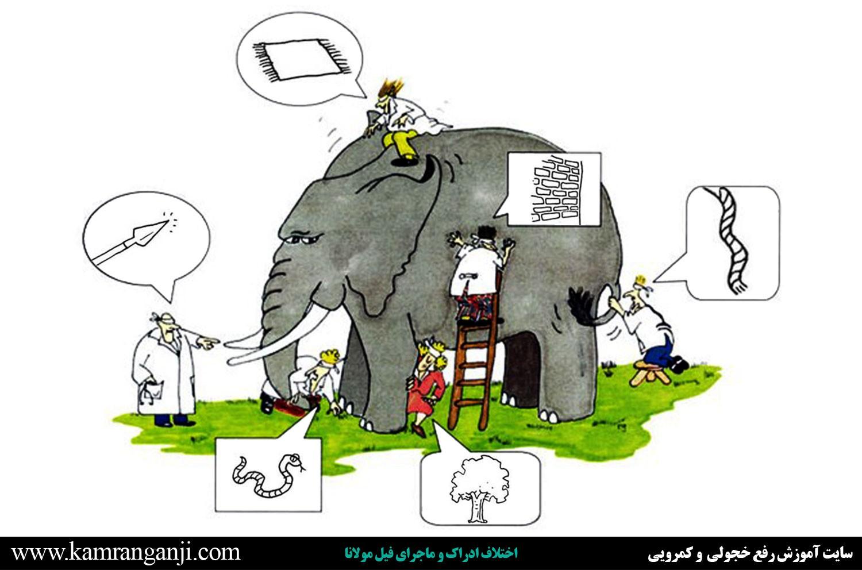 اختلاف ادراک و ماجرای فیل مولانا ادراک ادراک چیست